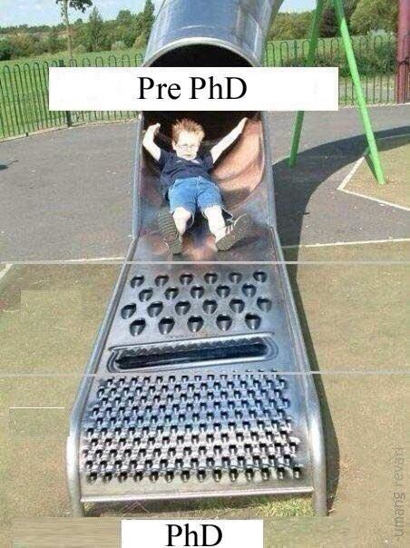 My 10 Thoughts about Getting a PhD. (Maybe You Should Be Sitting Down.)